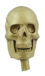 "1 1/4"" Skull Flat Bottom"