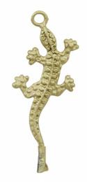 "1 1/2"" Gecko"