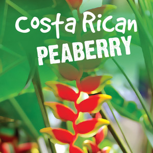 Costa Rica - Peaberry