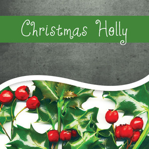 Christmas Holly Flavor Coffee