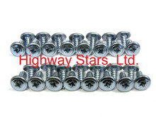 Screws - Wheel well molding screws - Silver Set of 30