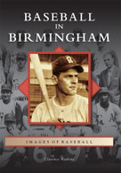 Baseball in Birmingham by Clarence Watkins, 9780738566863