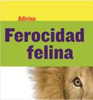 Ferocidad felina (Fiercely Feline) (León (Lion)) - 9781634714648 by Kelly Calhoun, 9781634714648