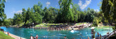 Summertime Barton Springs Panoramic