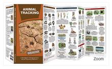 Animal Tracks- A pocket Naturalist Guide