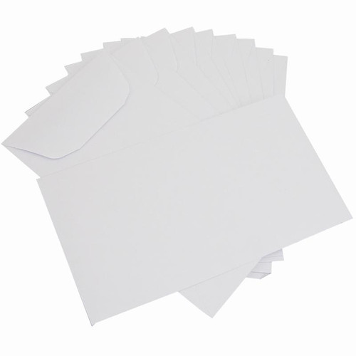 "500 white blank job envelopes 3 1/8"" x 5 1/2"""