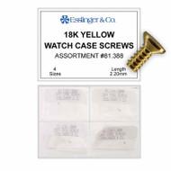 15K Yellow Watch Case Screws
