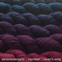 Meridian Gradient Set Raven's Wing