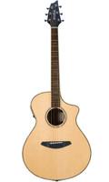 BREEDLOVE STAGE C22CE ACOUSTIC/ELECTRIC GUITAR Guitar World AUSTRALIA