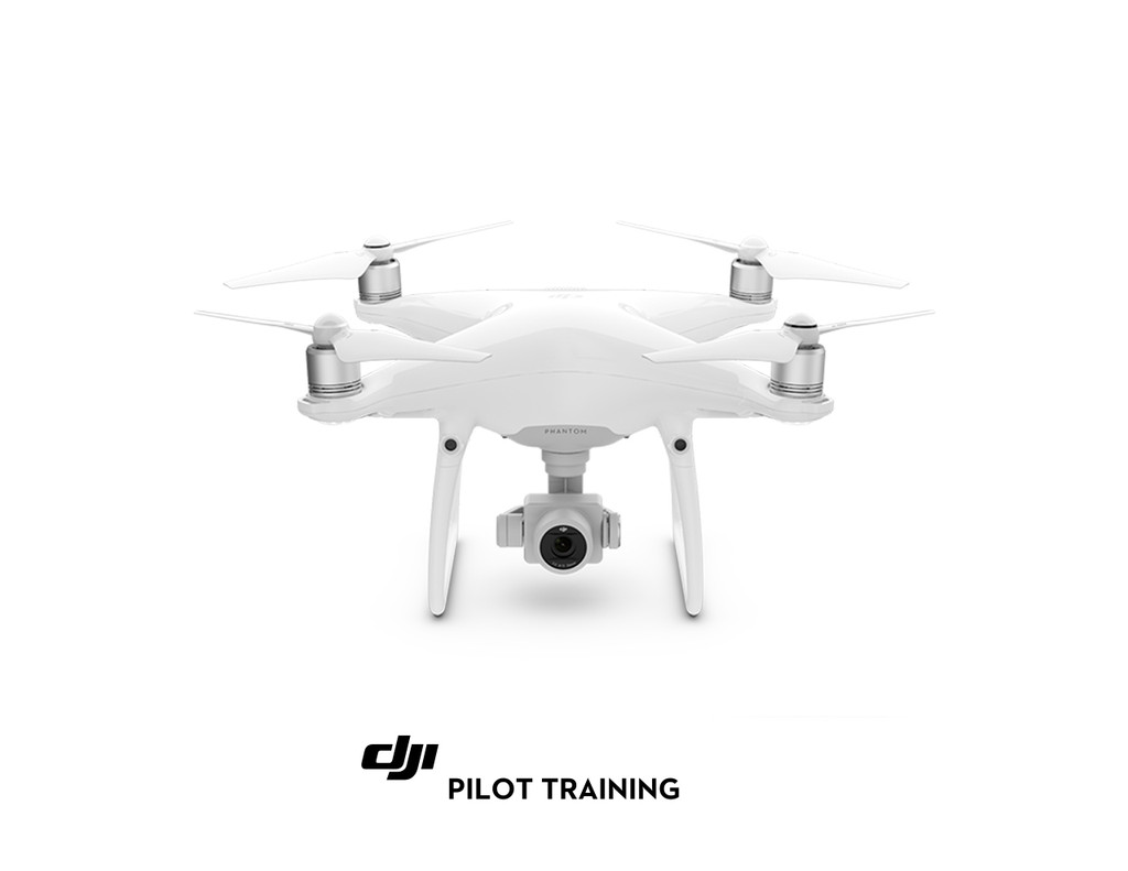 Phantom 4 Pro with Training