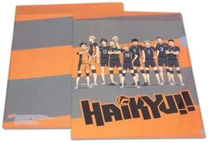 Haikyu!! File Folder - Team