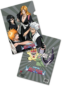 Bleach File Folder - Group