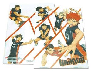 Haikyu!! File Folder - Team Play