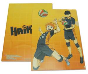 Haikyu!! File Folder - Hinata & Kageyama