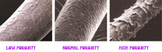 What is hair porosity urmus Choice Image