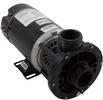 WW E-Series1.0HP SPL Spa Pump 3410410-15HZN US Motor