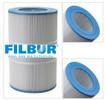Filbur FC-0685 Spa Filter C-9407 PAP75-4
