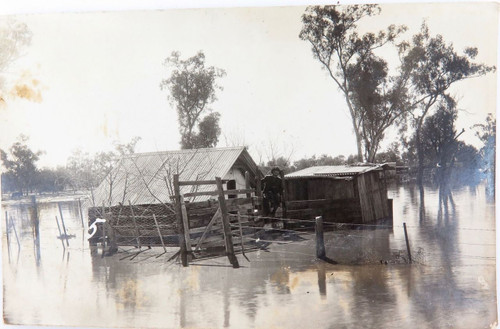 "RARE c1920 GOONDIWINDI FLOODS REAL PHOTO POSTCARD. ""MICKS HOUSE IN THE FLOOD"""