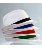 Coloured Bands for Trilby DG99