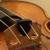 Alpine Professional Violin/Viola Mute