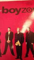 Boyzone,voice&guitar,70% off