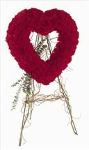 Red Carnation Open Heart