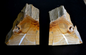 Petrified wood book ends, lined in brown felt. Oak still retains clear image of the tree rings. From Oregon, Stinkingwater.