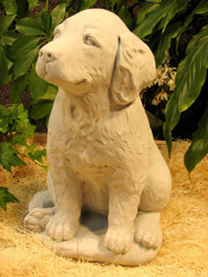 "Golden Retriever Puppy 16""H"
