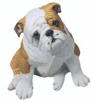 "Sandicast Bulldog Pup Statue (14""H) (Fawn)"