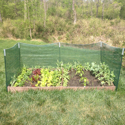 Use as a trellis around the perimeter of your raised garden bed.