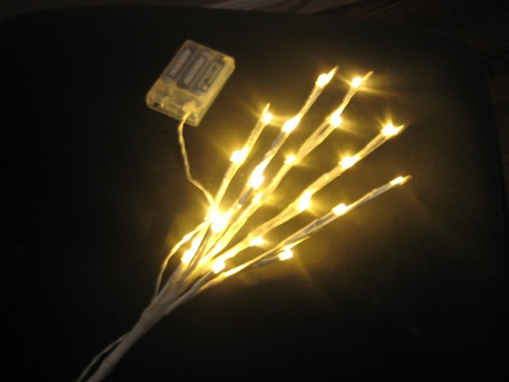 White 17 Inch Branch with 20 Warm White LED Lights - Battery Operated