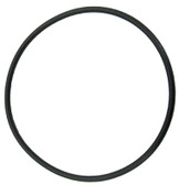 BALBOA/VICO | O-RING FOR 2 UNION | 9170-04CA
