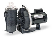 PENTAIR | CHALLENGER PUMP 2HP FR EE HH 230V COMPLETE | 345208 (345208)