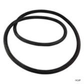 "Pentair/Sta-Rite | O-Ring,CORD FOR 21""TANK (O-485) 
