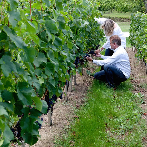 Les Trois Hectares Rouge 2012