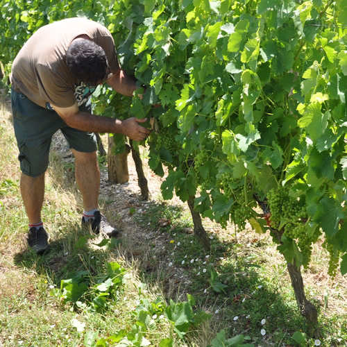 Les Trois Hectares Rouge 20125