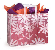 Frosted Tote Gift Bag - Daisies