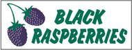 Black Raspberries banner 8' x 3'