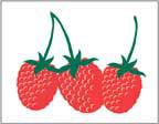 Marketeer Sign - Raspberry