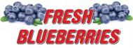 Fresh Blueberries banner Heavy Duty