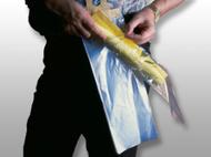 Polypropylene Newspaper Bag on Header 6.5x20