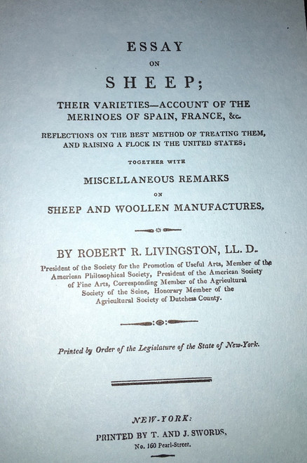 essay about sheep