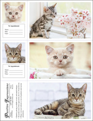 3CATMIX6 - 3 Up Reminder Cards