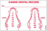 "LR-164B: Canine Dental Record ""B"" Series"