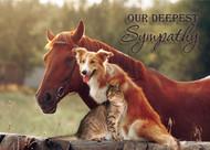 SYMMIX2 - Sympathy Card