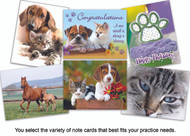 Create-A-Pack of Note Cards