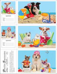 3DCMIX50 - 3 Up Reminder Cards