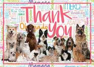 THANKS11 - Thank You Card