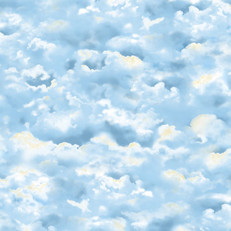 Wingman Blue Clouds by Quilting Treasures