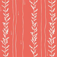 Kelp Coral Knit by Birch Organics